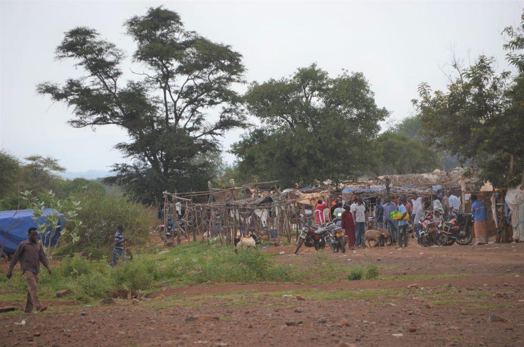 Madame M les Voyages  Notre rencontre avec les Massaïs de Tanzanie le marché
