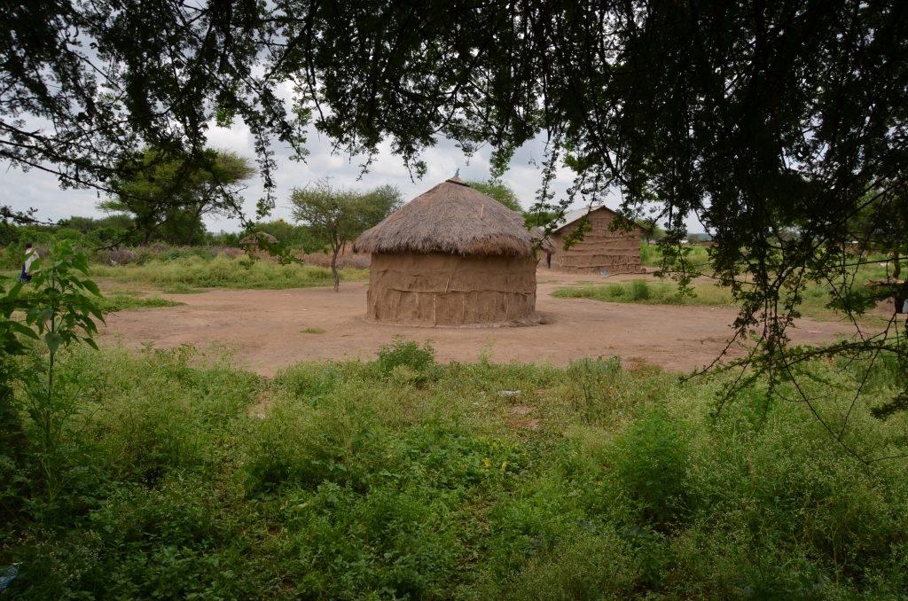 Madame M les Voyages  Notre rencontre avec les Massaïs de Tanzanie village Massaï