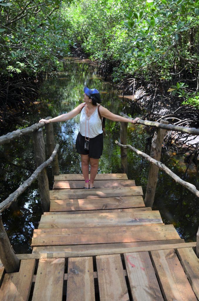 blog voyage Madame M les voyages 6 choses à faire à Zanzibar la forêt de Jozanie