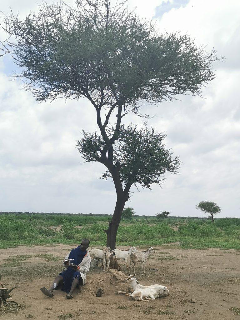 Madame M les Voyages  Notre rencontre avec les Massaïs de Tanzanie Rencontre avec Méléji