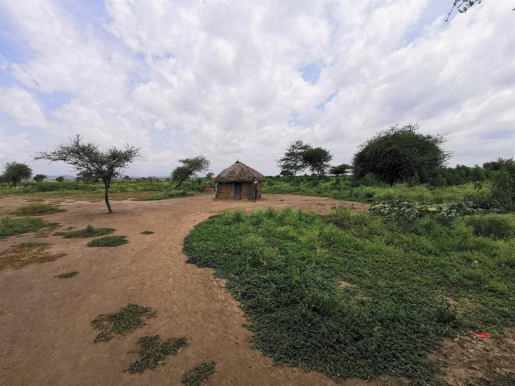 Madame M les Voyages  Notre rencontre avec les Massaïs de Tanzanie le village Massaï