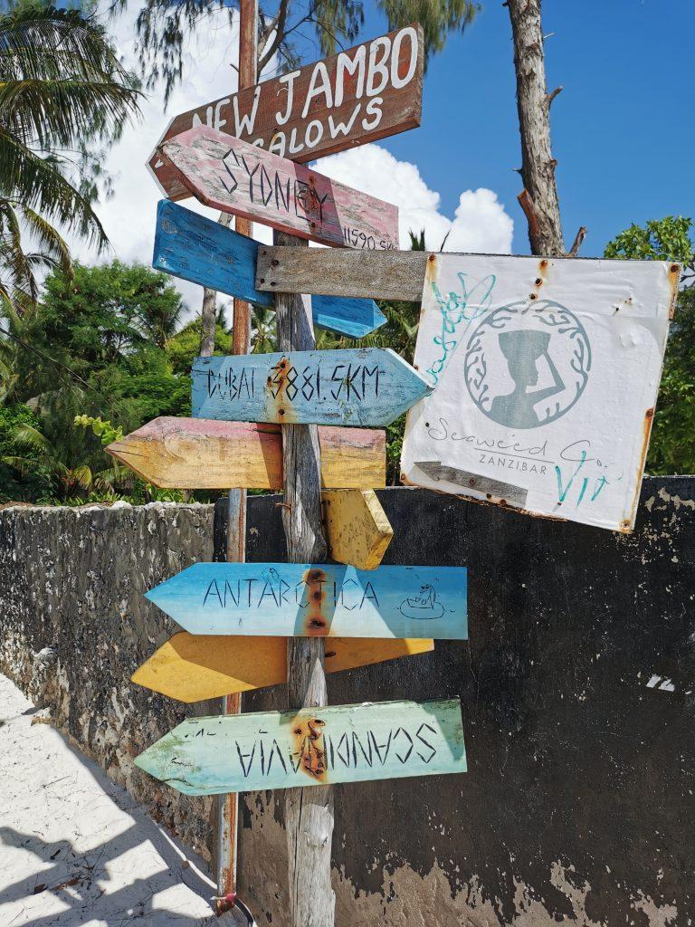 Madame M les voyages blog voyage  Découvrir Jambiani et Paje à Zanzibar le seaweed center
