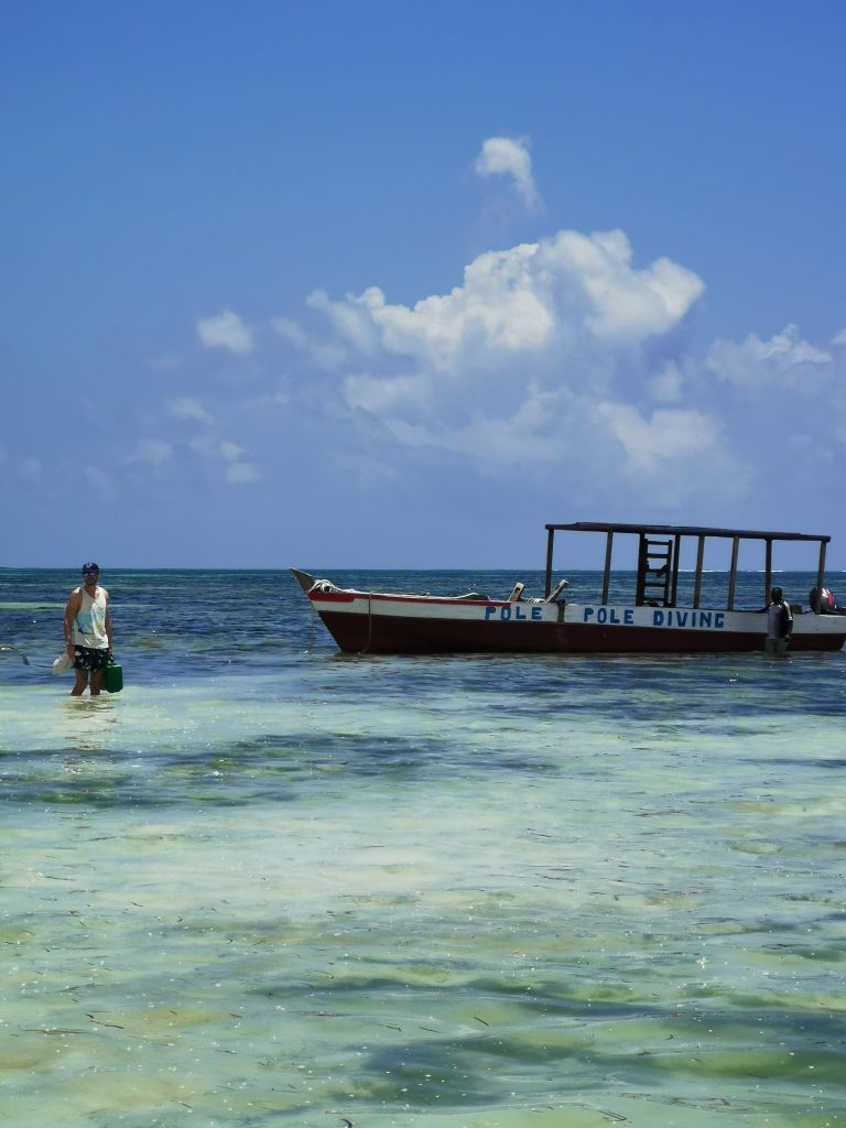 Madame M les voyages blog voyage  Découvrir Jambiani et Paje à Zanzibar Plongée sous-marine
