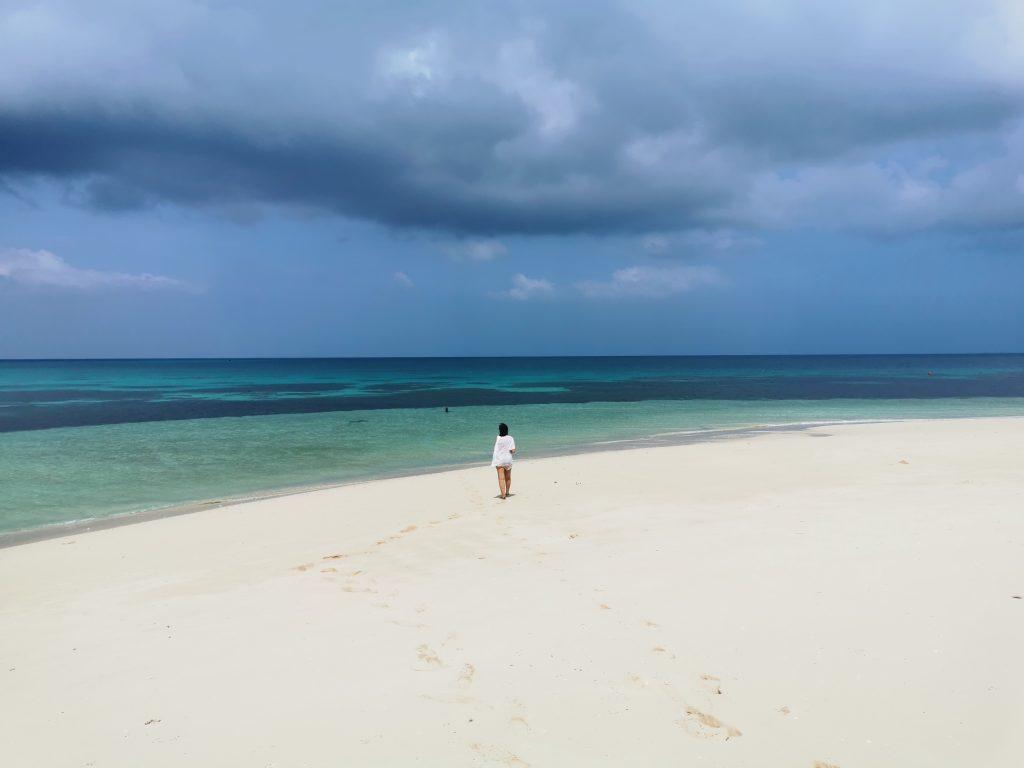 blog voyage Madame M les voyages 6 choses à faire à Zanzibar Blue safari