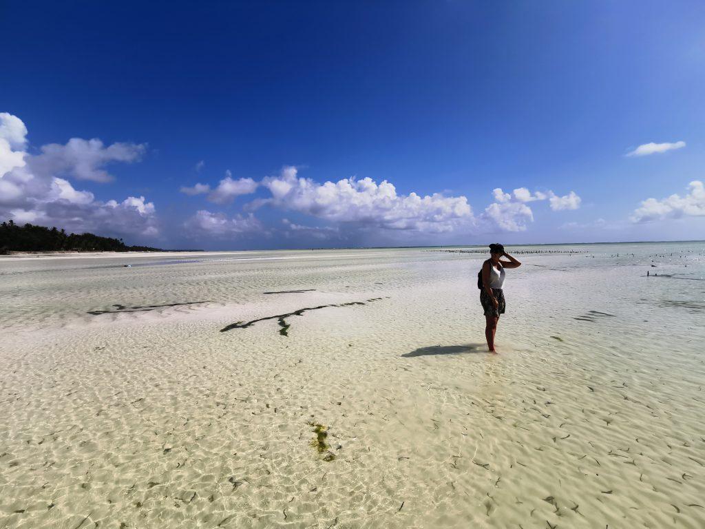 Madame M les Voyages  blog voyage  préparer son voyage en Tanzanie et Zanzibar
