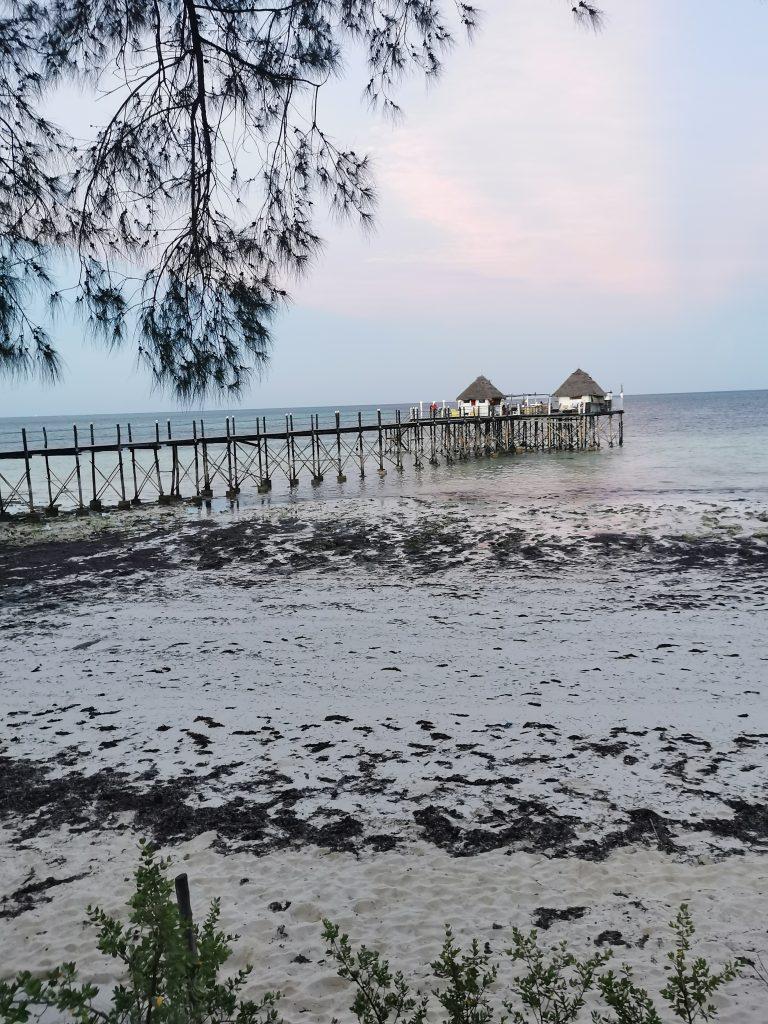 Madame M les voyages blog voyage  Découvrir Jambiani et Paje à Zanzibar Le spice bar